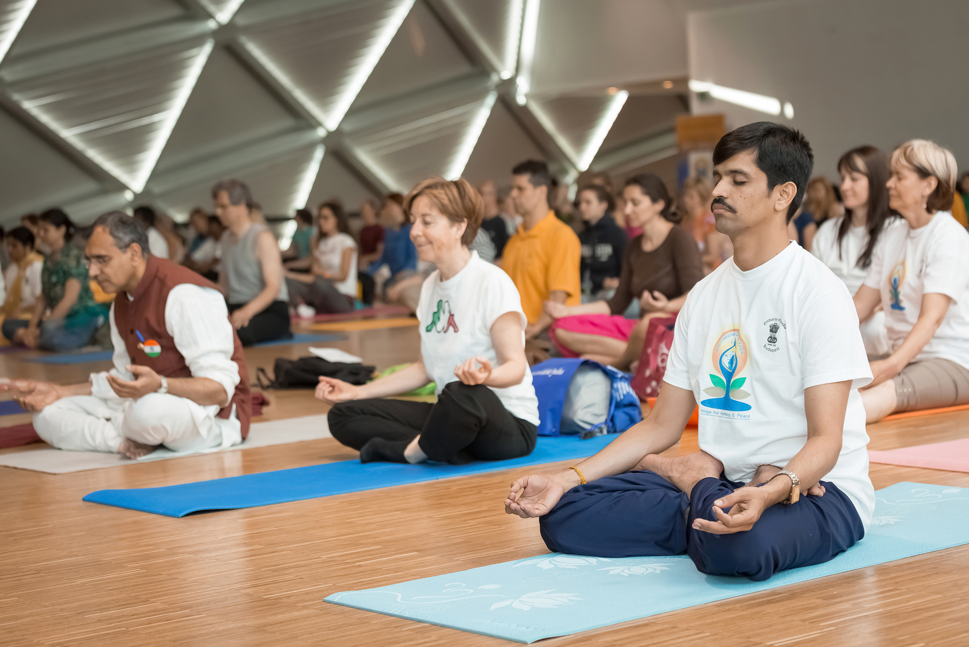 international day of yoga, budapest, hungary, balna